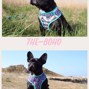 Boho, Harness, French Bulldog
